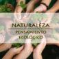 ecothoblog